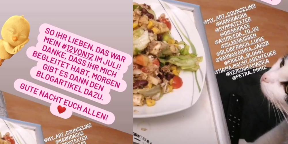 Das Bild zeigt links den Text: So ihr Lieben, das war mein 12von12 im Juli! Danke, dass ihr mich begleitet habt, morgen gibt es dann den Blogartikel dazu. Gute Nacht euch allen! Rechts ist ein Teller Salat und eine neugierige Katzennase zu sehen